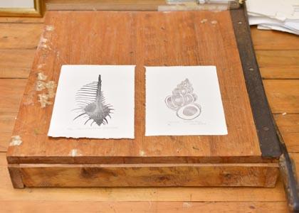 Allan Gale prints