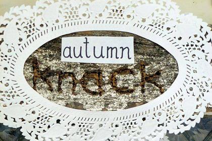autumn knack wellington