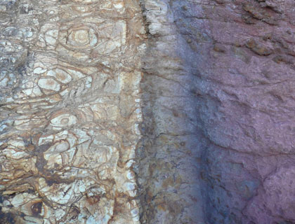 Pigments in their natural habitat – a cross-section of colour in rock
