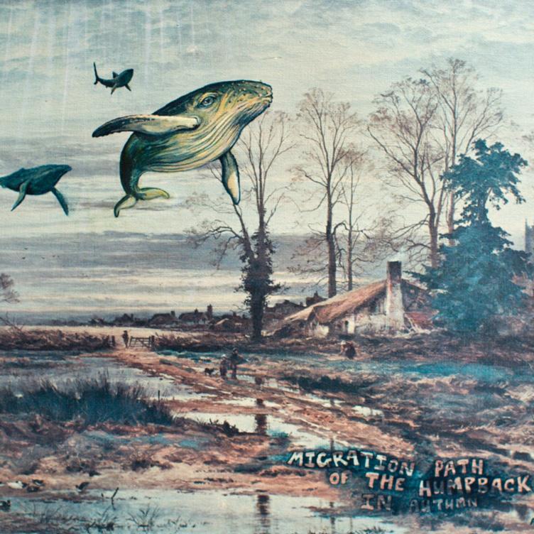 Cetacean surrealism