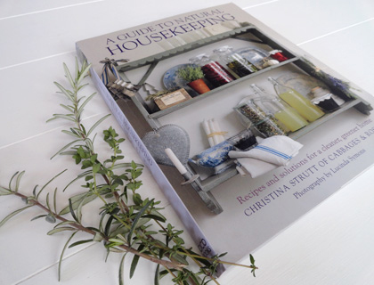 Cover of A Guide to Natural Housekeeping by Christina Strutt