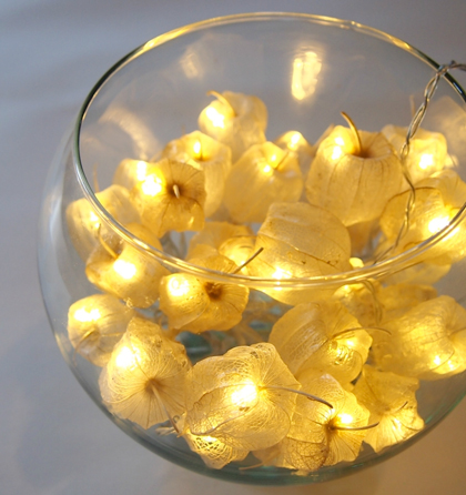 Cape Gooseberry Fairy Lights by Moonlighting
