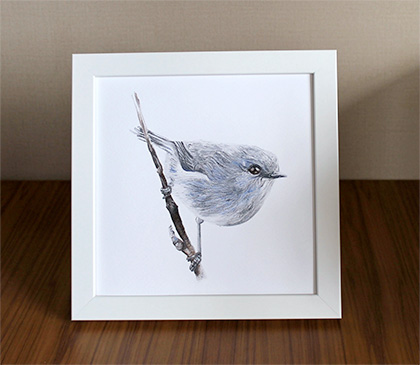 The Grey Warbler / Riroriro (Blue) by Rea Art