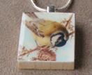 songbird.felt.co.nz
