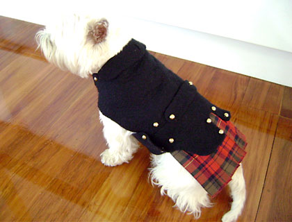 Hand felted dog coat by Woolly Lamb Felt