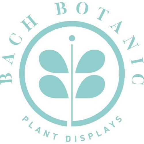 bachbotanic