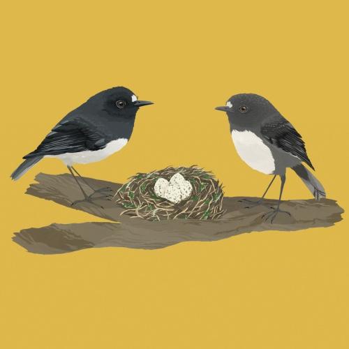 birdplusbird
