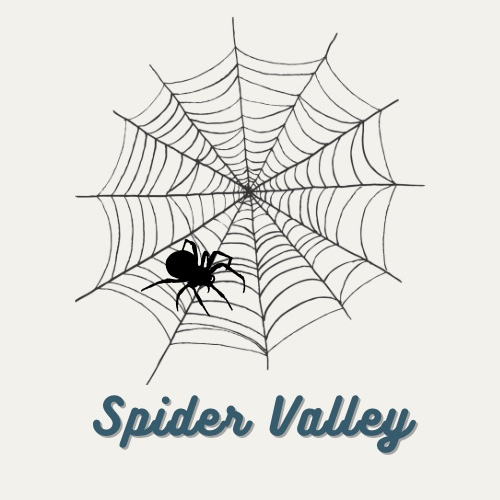 spidervalley