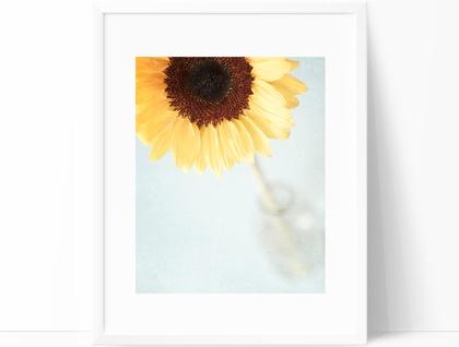 A Dose of Sunshine - 8x10 sunflower photograph