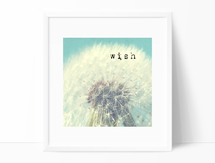 Wish - 8x8 dandelion typography photograph with an aqua background