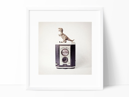 The Dinosaur and the Box Brownie - quirky photography for a nursery or boys room