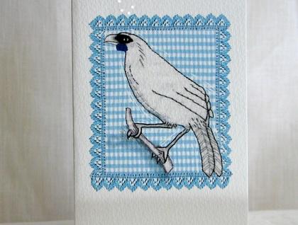 Bird Cards - Donated by Birdspoke