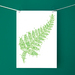 Green Fern Fine Art Print - Donated by cloudnine