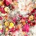 Floral Bath Salts - Calm the f..k Down
