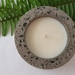 French pear concrete candle