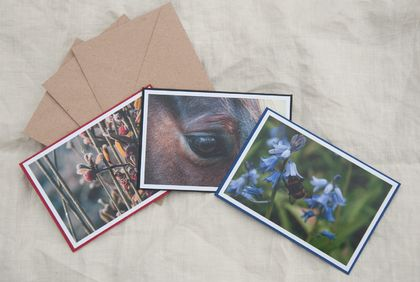 Three Blank Greeting Cards