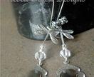 Silvery Wings