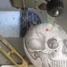 Printed Pincushion - Skull