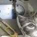 Printed Pincushion - Kitty