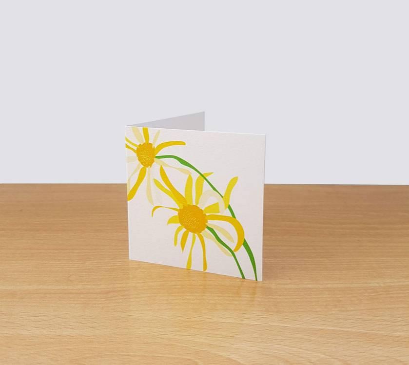 Daisy Gift Card