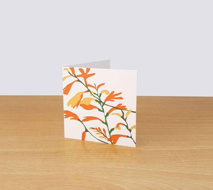 Montbretia Gift Card