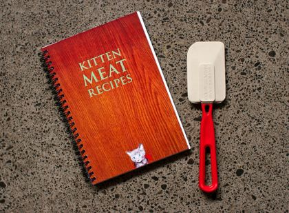 Kitten Meat Recipes
