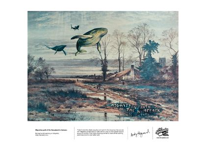 Migration Path of the Humpback in Autumn - Print - A4