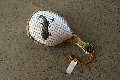 Cat Poo on a tennis racquet - Pillow Fighting Cushion