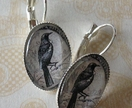 Tui Stamp Earring Silver Plated  oval or round