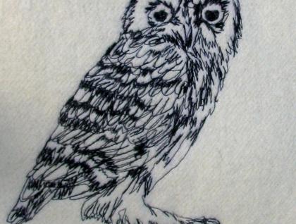 Little Owl Kiwiana bird cushions