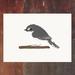 Grey Warbler - Riroriro - New Zealand Bird A4 Archival Art Print