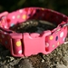 Handmade dog collar - medium size