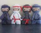 Ninja Invasion!!