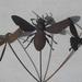 Kiwiana Garden Art BUTTERFLIES, BEES & DRAGONFLIES