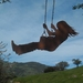 Ironweed GIRL ON A SWING