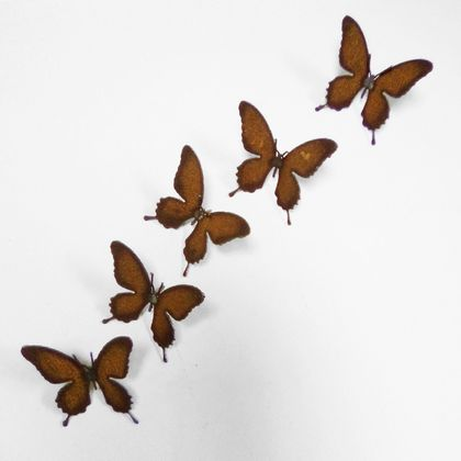 Ironweed SET OF BUTTERFLY NAILS