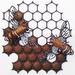 Ironweed HONEYCOMB WITH MEDIUM BEES
