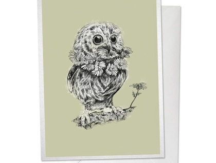 Mr Owl Gift Card - Green