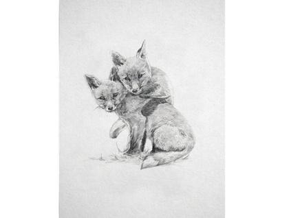 Fox Pair Digital Art Print