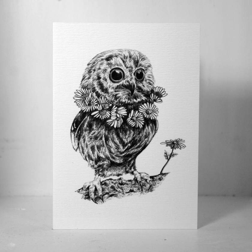 Mr Owl Gift Card