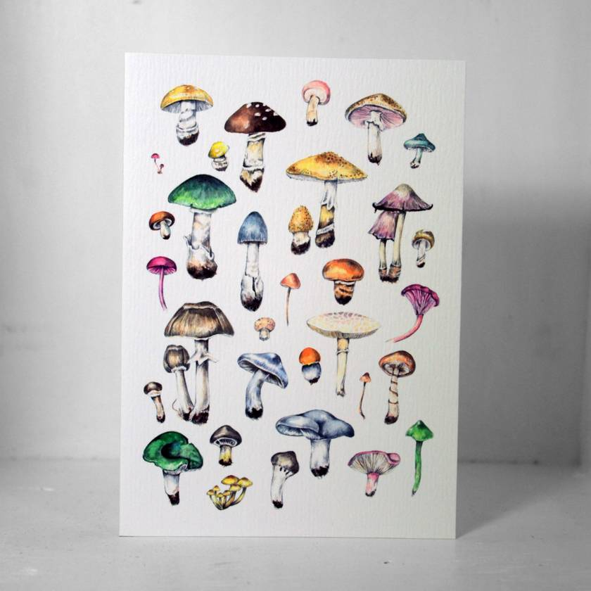 Mushrooms Gift Card