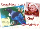 Countdown To A Kiwi Christmas : Motherhood Treasury
