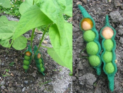 Two Peas in a Pod - gorgeous little vege-babies for your nature table display!