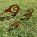 Kiwi Koru Family