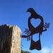 WOOD PIGEON    STEEL SILHOUETTE  (  KERERU  )