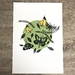 Moths. Woodcut print.