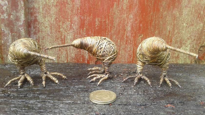 Small Kiwi