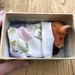 Fox in a Box Knitting Kit