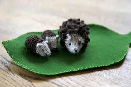 Hedgehogs in a Box Knitting Kit