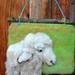New Zealand Romney cross sheeps wool - wool art piece  - Natural gift  - needle felted